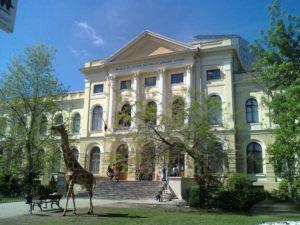 1-muzeul-antipa